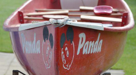 """Unser """"Panda"""" wird 50!"""